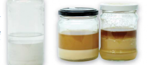 On the left, green mineral spirits poured from the bottle and allowed to settle. On the right, two mixtures of oil-varnish finishes that include settled green mineral spirits.